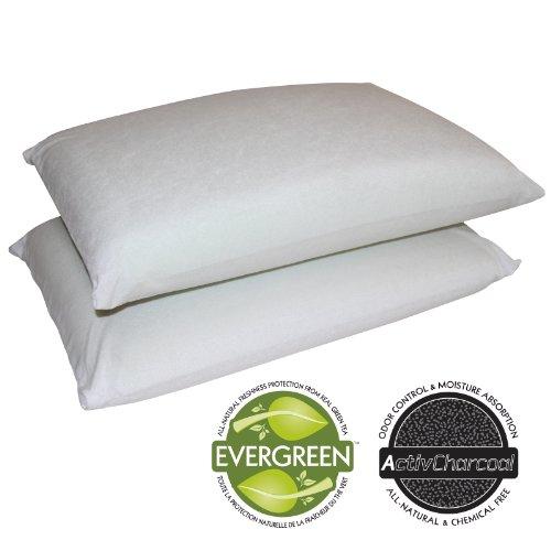 Top 10 Best Hypoallergenic Bed Pillows 2014 - HotSeller.net